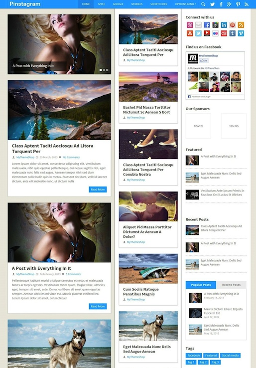 Responsive Pinterest-Inspired WordPress Theme - Pinstagram