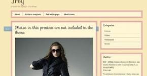Tumblr Clone WordPress Theme - Troy