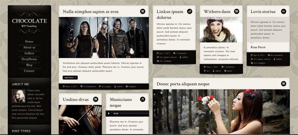 Responsive Tumblog Theme - Chocolate