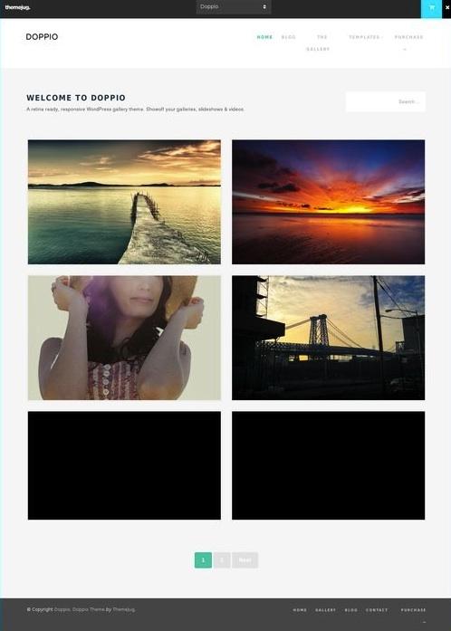 Responsive Tumblr Like WordPress Theme - Doppio