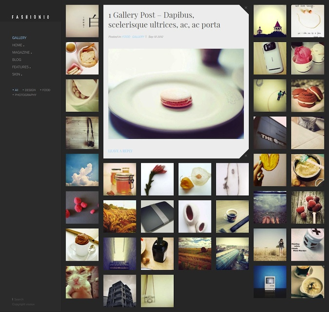 Responsive Tumblr Style WordPress Theme - Fashionic