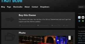 Tumblr-like Wordpress Theme - Fast Blog