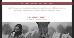 Responsive Tumblr-Like Wordpress Template - Serendipity